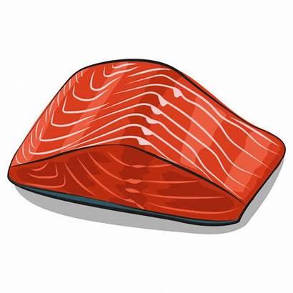Salmon Wild Vector Illustrations Cartoon Fillet Clip