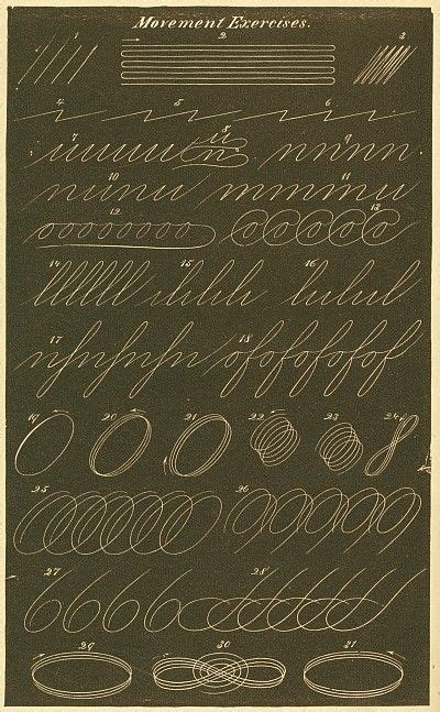 Movement Exercises  Spencerian Penmanship  Calligraphy Pinterest