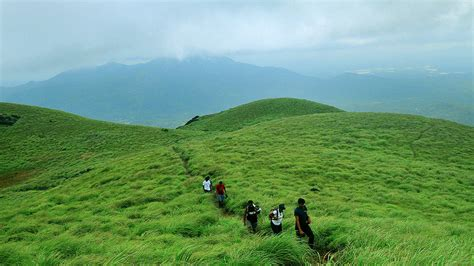 chembra peak  trekking packages wayanad eco tourism