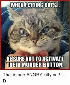 20 Super Duper Cute And Funny Kitty Memes | SayingImages.com