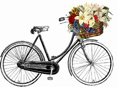 Bicycle Flower Clipart Bunch Transport Cycle Ride