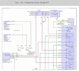 Ford Ikon Electrical Wiring Diagram