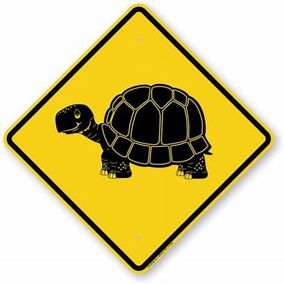 Crossing Animal Sign Symbol Tortoise Signs Slow