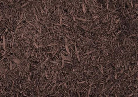 which mulch is best top 28 best bark mulch for what is the best mulch benefits and drawbacks of various 28