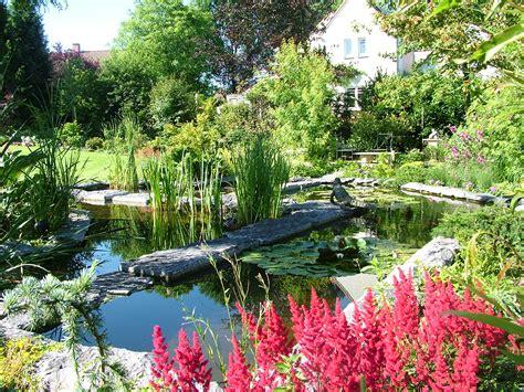 a garden aquatic garden scene jpm design sprl