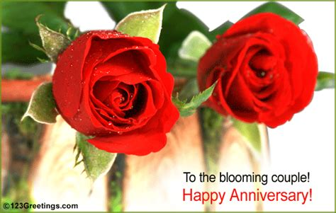 happy anniversary     couple ecards greeting cards