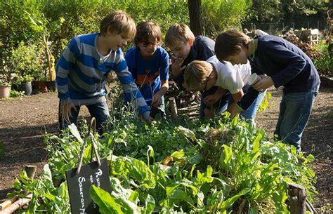 Ernten Und Geniessen Im November by Kiga Schule City Farm Augarten