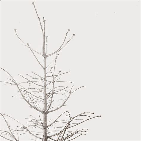 Weihnachtsbaum Ohne Nadeln by Cultform Hans Christian Der Baum Nadelt Nicht