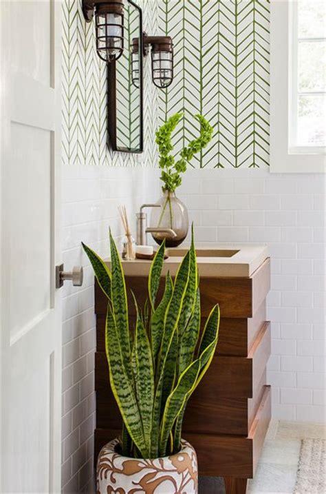 5 plantes pour votre salle de bain roselia