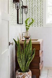 Plante Verte Salle De Bain : 5 plantes pour votre salle de bain roselia gardenroselia garden ~ Melissatoandfro.com Idées de Décoration