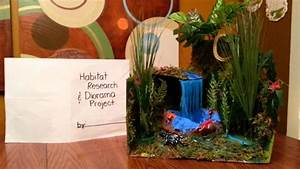 Habitat and Diorama Project - YouTube