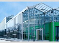 greenhouse High Quality Plastic Film Greenhouse from china