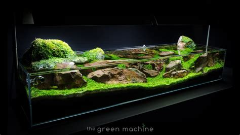 The Green Machine Aquascape aquascape tutorial guide continuity by findley