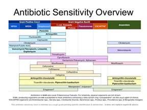 Sensitivity Antibiotic Overview