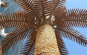 Enormous palm tree made of fruit breaks record at Saudi ...