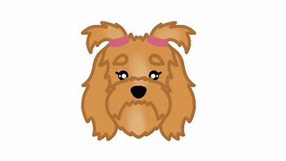 Dog Sticker Giphy Cavapoo Labradoodle Everything