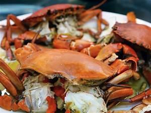 Fotos Gratis   Mar  Oceano  Restaurante  Naranja  Plato  Comida  Cocina  Mariscos  Fresco