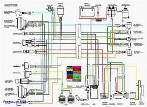 Panther 110 Atv Wiring Diagram