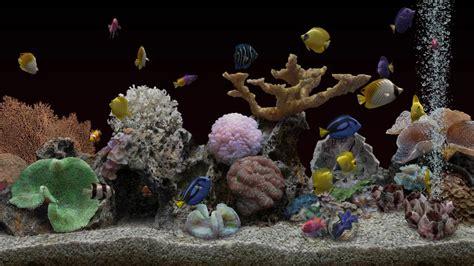 sea aquarium 2 for 1 marine aquarium 3 3 android apps on play