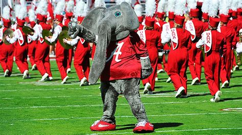 12+ College Football Mascots  Pics