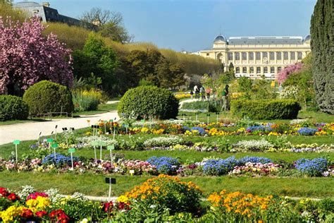 Jardin Des Plantes Lyon 1 by Angers France Best Places To Visit For A Pleasant Trip Of