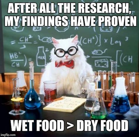 Chemistry Cat Memes - chemistry cat meme imgflip