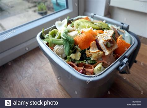 domactis cuisine container of domestic food waste ready to be collected by