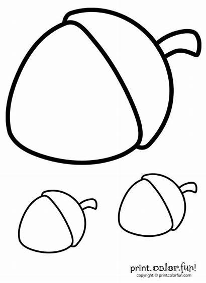 Acorn Coloring Acorns Pages Printable Nuts Squirrel