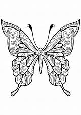 Coloring Butterflies Simple Pages Coloriage Animals sketch template