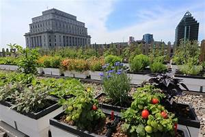 HGTV presents gardens in the sky and other rooftop green