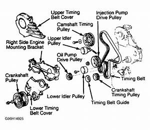 1984 Toyota Corolla Serpentine Belt Routing And Timing