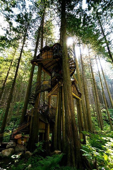 dream   child  fantasy treehouses   world bit rebels