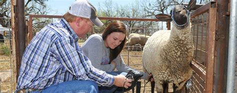 animal science masters degree ms