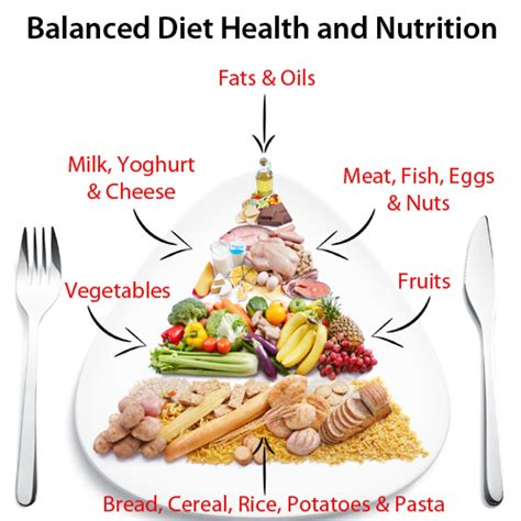 information of balanced diet denise fessenden