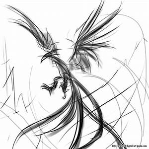 Phoenix Bird Head Drawings