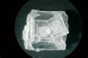 Le Cristal De Sel Lidl by Fabrication De Cristaux De Sel G 233 Odiversit 233 Net