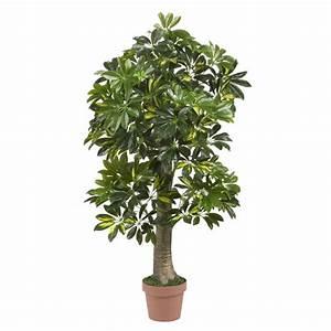 Plantes Vertes D Intérieur Photos : plantes vertes d 39 int rieur la nature dans notre quotidien ~ Preciouscoupons.com Idées de Décoration
