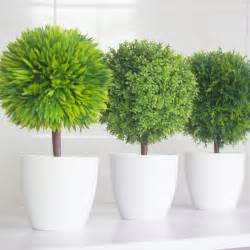 home interior plants popular interior decoration plants buy cheap interior decoration plants lots from china interior