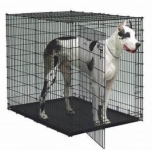 Cheap wire dog crates for Inexpensive dog crates