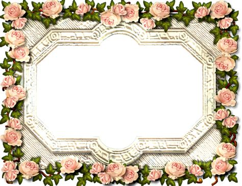 No Frames Picture 3 Piece Modern Cheap Home Decor Wall: 花の写真・フリー素材/フレーム枠No.161『エレガント・ピンク薔薇』