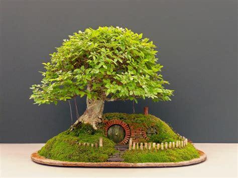 bonsai kunstwerke von chris guise