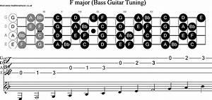 Bass Guitar Scale F