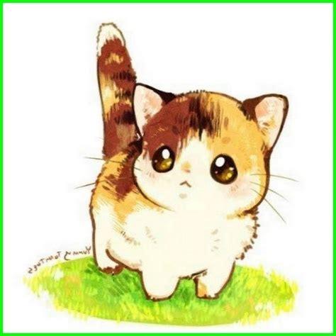 Kucing Imut Dan Lucu Semua Yang Kamu Mau