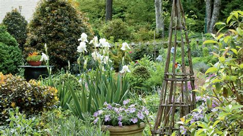 container height variation cottage garden design