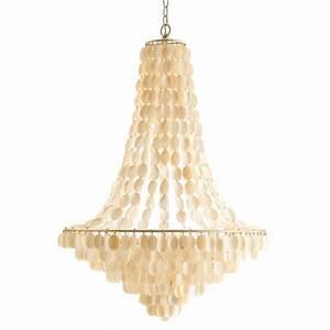 Shell chandelier lights
