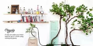 Bewässerungssystem Für Zimmerpflanzen : clayola bew sserungssystem f r ihre sorgenfreie sommerzeit ~ Markanthonyermac.com Haus und Dekorationen