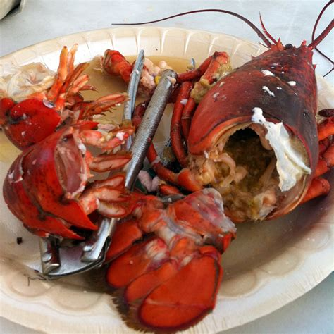 how to cook a lobster how to cook and eat a lobster the musing bouche