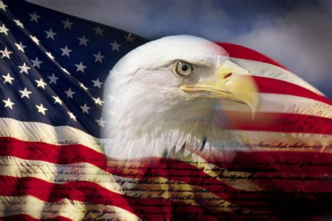 soundproofing for home theater digital composite bald eagle and flag