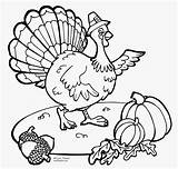 Thanksgiving Coloring Printable Turkey Pilgrim Pilgrims Hat Internet Own Any Throughout Found sketch template