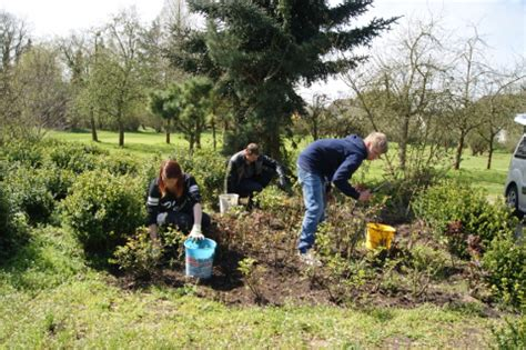 Ausbildung Zum Werker Im Garten Und Landschaftsbau by Gartenbau Agrarwirtschaft Abteilungen Bildung